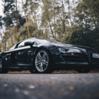 R8 (36 of 135)