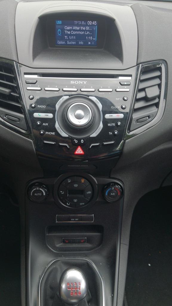 Fiesta ST (2)