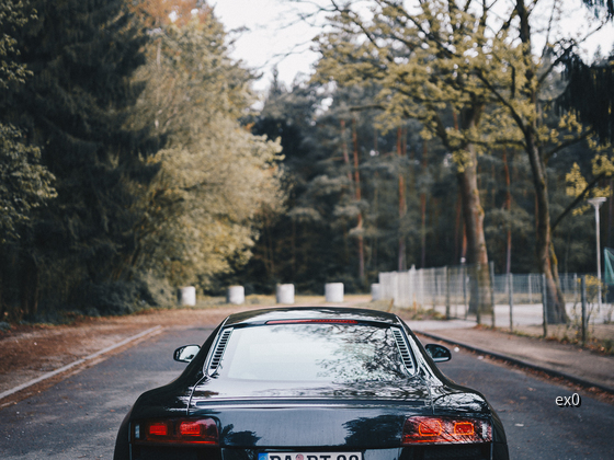R8 (72 of 135)