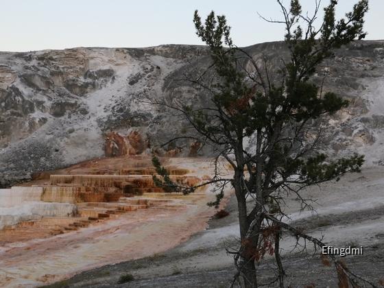 k-Yellowstone NP 1