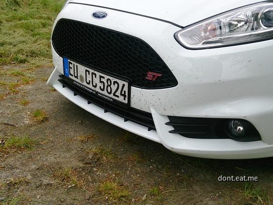 Fiesta ST (11)
