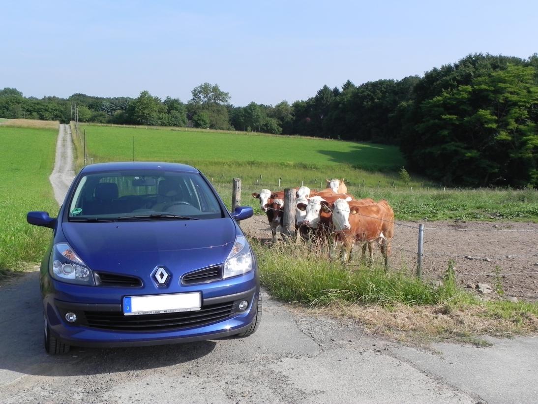 Renault Clio I privat