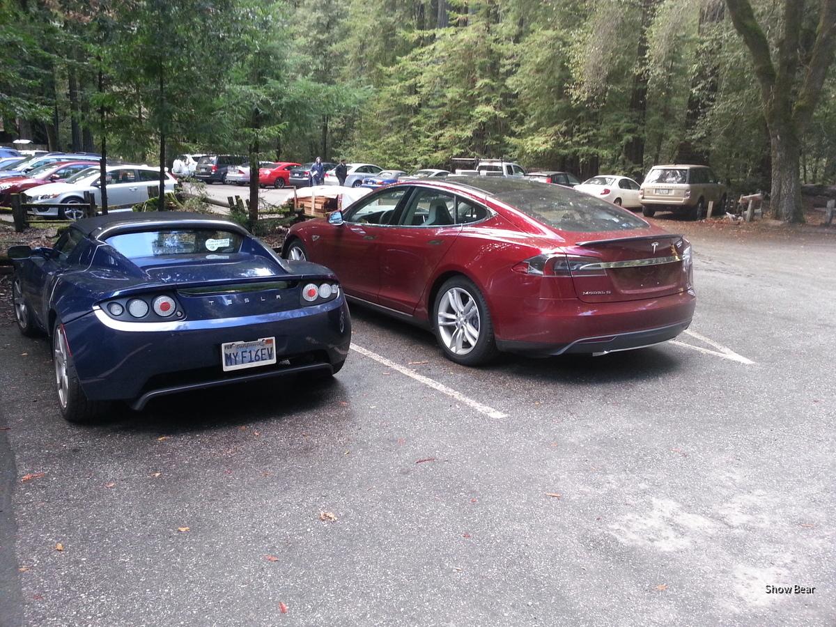 Tesla x2