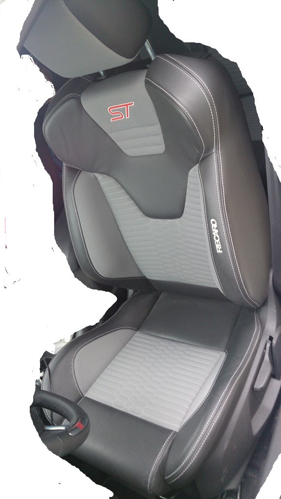 Fiesta ST (14)