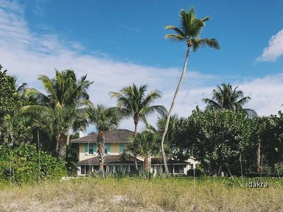 Florida_MWT_iPhone_Farbe_1200_0009
