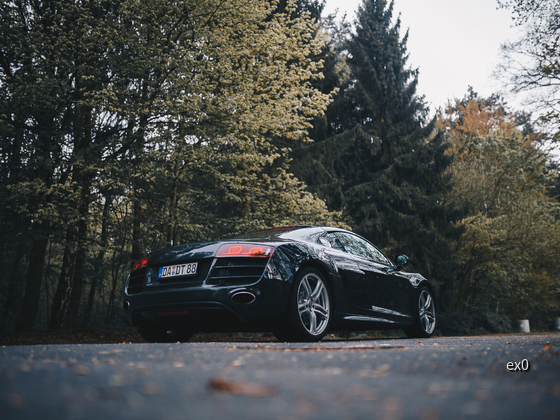 R8 (27 of 135)