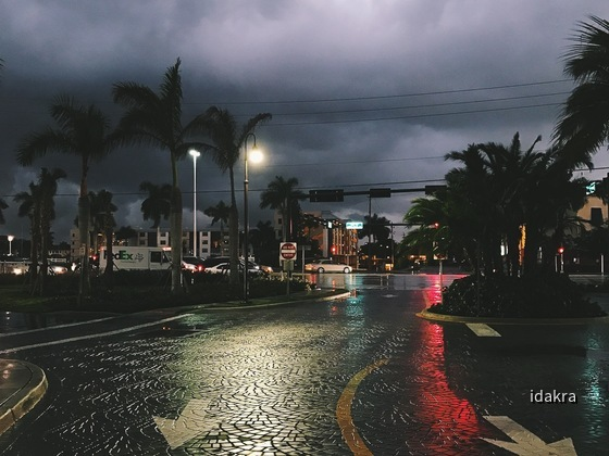 Florida_MWT_iPhone_Farbe_1200_0011