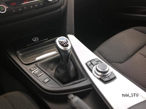 BMW 316i (10)
