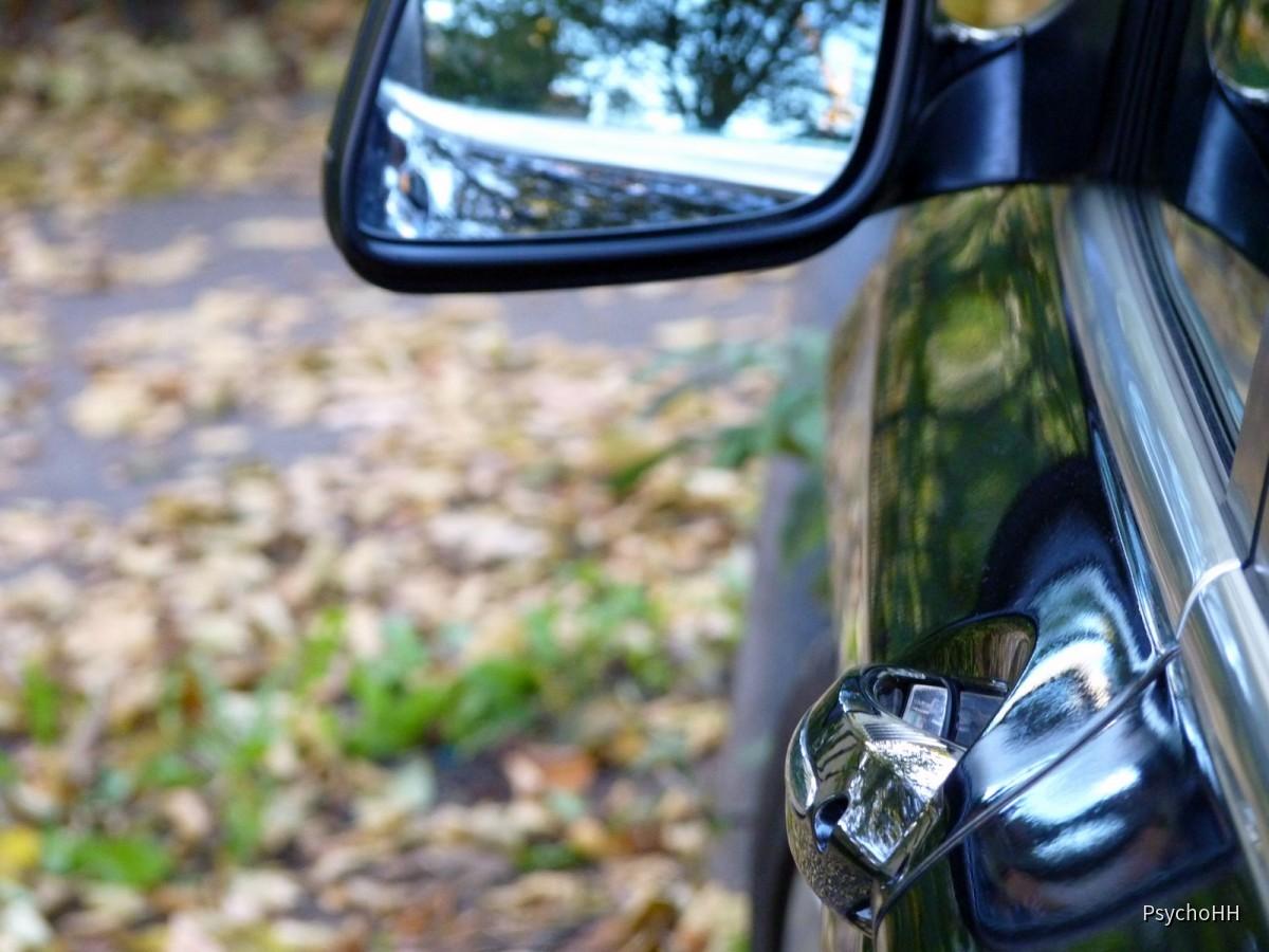 BMW 730d (43)