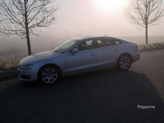 Audi A 5 2.0 TFSI 015