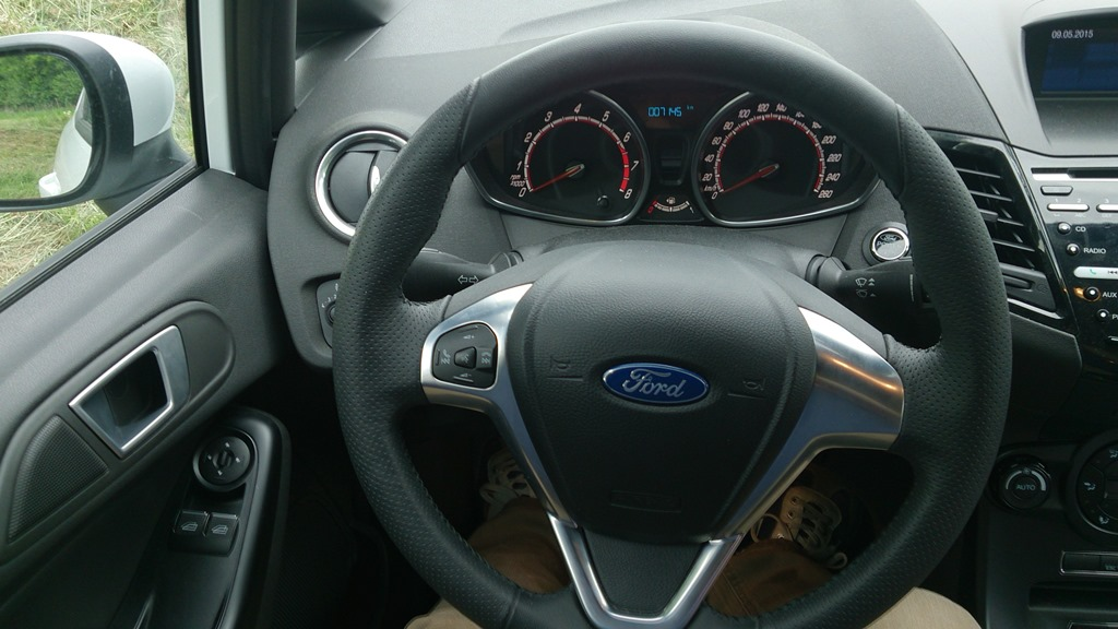 Fiesta ST (15)