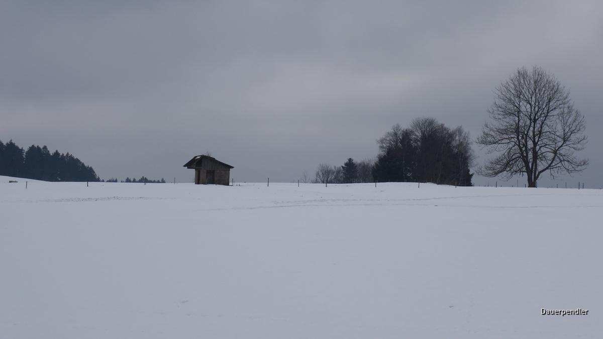 Schneefläche