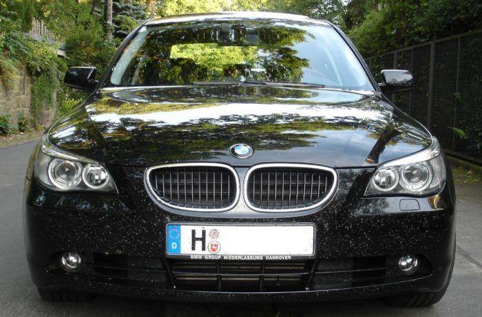 BMW 530d, Insektenkiller
