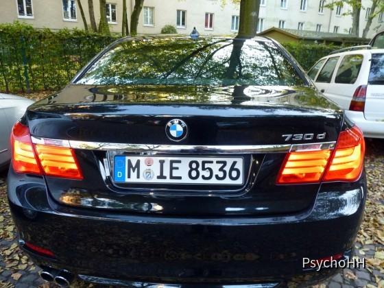 BMW 730d (48)