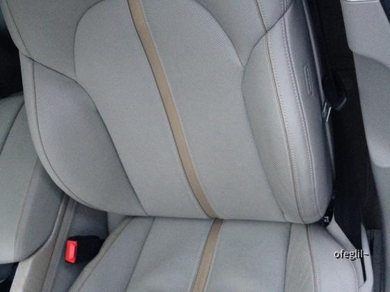 A8L Fahrersitz