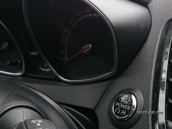 Fiesta ST (16)
