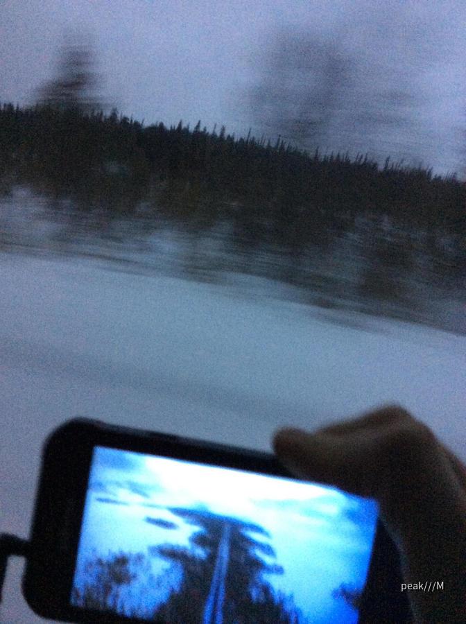Sandero von motorrent Murmansk