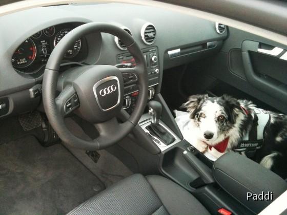 Audi A3 Sportback 2,0 TDi S- Tronic