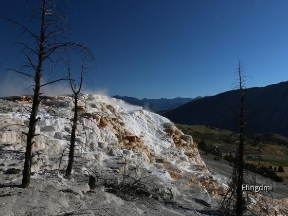 k-Yellowstone NP 2