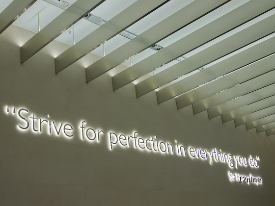 """""""Strive for perfection in everything you do."""""""
