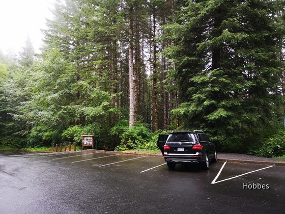MB GLS 450   Sixt Seattle Airport