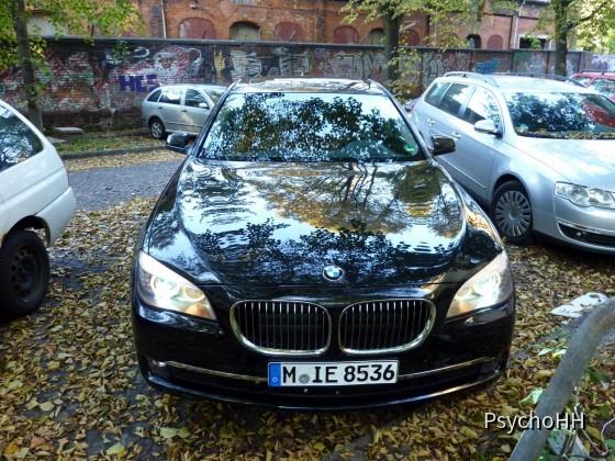 BMW 730d (49)