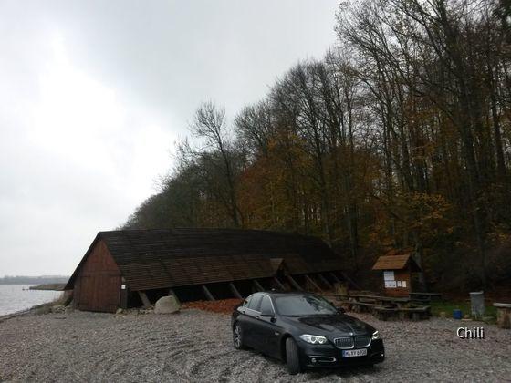 BMW 530d xDrive (6)